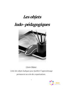 Page_de_garde_les_objets_ludo-pédagogiques